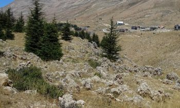 Pielgrzymka-Liban-Święty-Charbel (111)