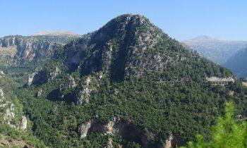 Pielgrzymka-Liban-Święty-Charbel (114)