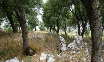 Pielgrzymka-Liban-Święty-Charbel (139)