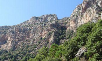 Pielgrzymka-Liban-Święty-Charbel (140)