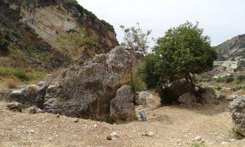 Pielgrzymka-Liban-Święty-Charbel (146)