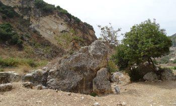 Pielgrzymka-Liban-Święty-Charbel (147)