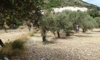 Pielgrzymka-Liban-Święty-Charbel (149)