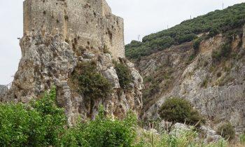 Pielgrzymka-Liban-Święty-Charbel (33)