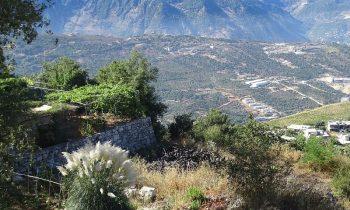 Pielgrzymka-Liban-Święty-Charbel (36)