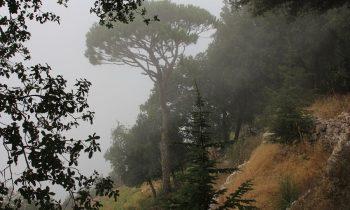 Pielgrzymka-Liban-Święty-Charbel (87)
